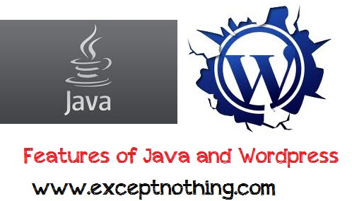 features of java and wordpress
